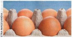 Les mystères de l'œuf.